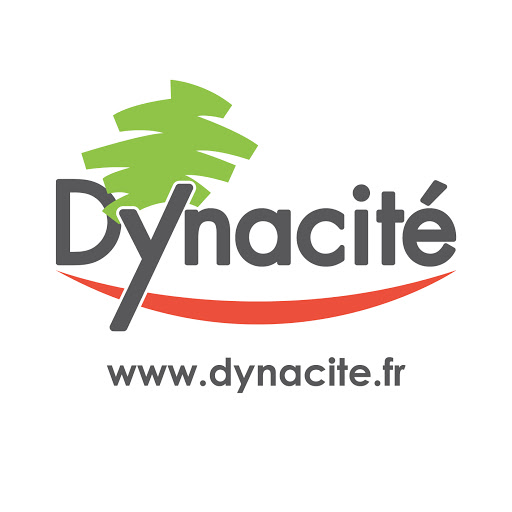 Création du nom Dynacité par Nymeo