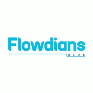 Identité visuelle de la marque Flowdians par l'Agence NYMEO
